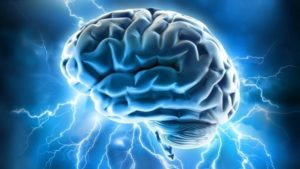 RD stimulates the brain to produce BDNF and Serotonin