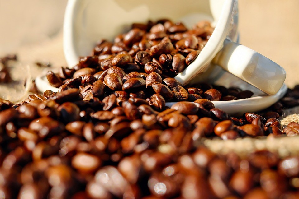 Light roasted coffee beans high in caffeine and antioxidants