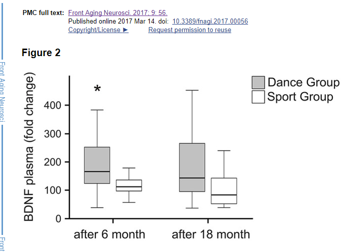 Dancers produced higher BDNF levels than physical sports group at both 6 and 18 month
